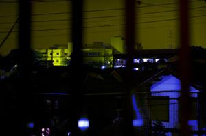 Photo1254
