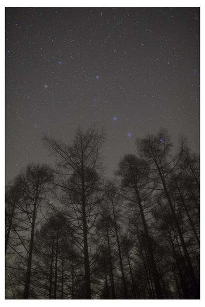 Photo265